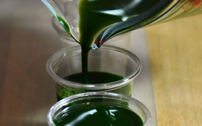Minerals in Wheatgrass Juice